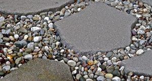 Stepping-Stones-Grant-Guarino