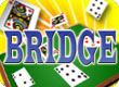 tn-lg-bridge